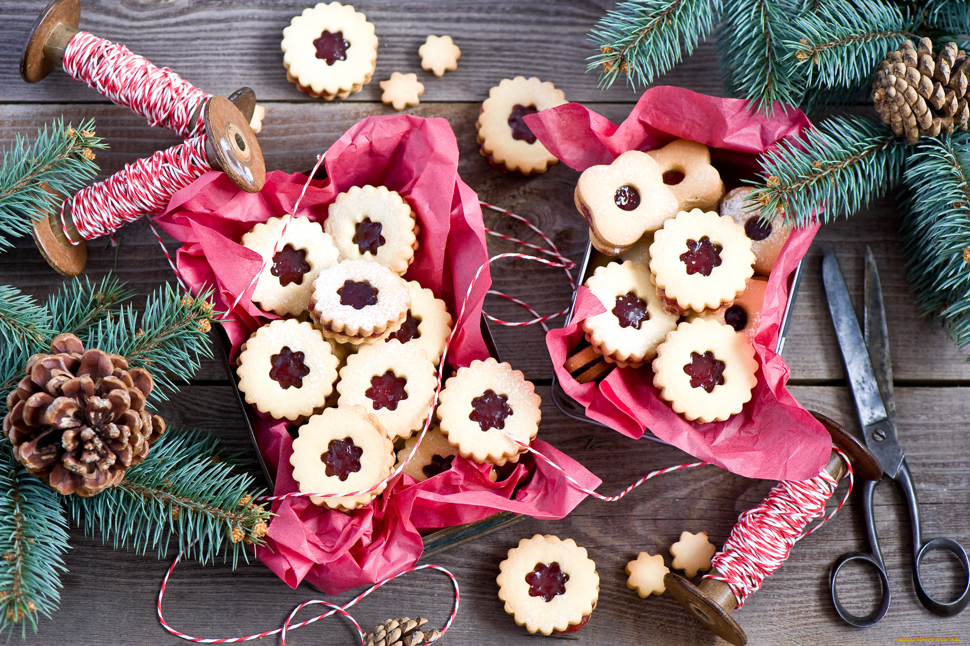 тест печенье новогодние шишки фото ранних лет